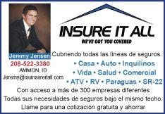 Insure-It-All